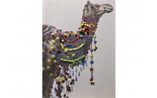 Obraz 90x120cm Wielbłąd