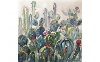 Obraz 100x100cm Kaktusy