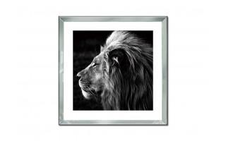 Obraz szklany 60x60 Głowa lwa