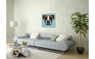 Obraz szklany 60x60 Pies (260339)