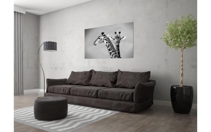 Obraz szklany 120x80 Żyrafy (260285)