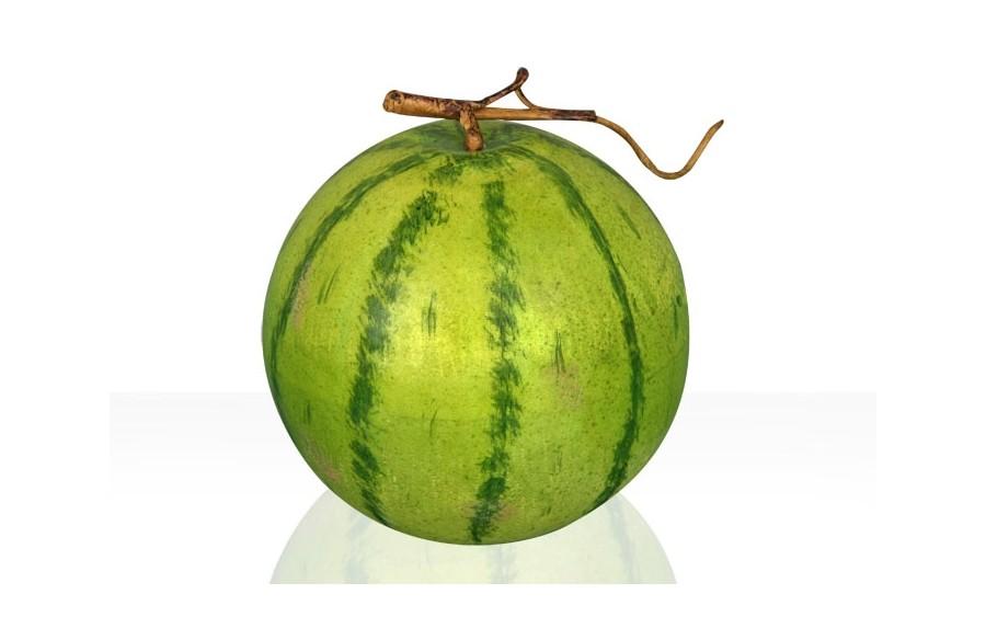 Sztuczny owoc - Arbuz