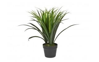 Roślina doniczkowa Trawa 50cm (sztuczna)