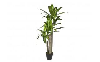 Roślina doniczkowa Dracena 125cm (sztuczna)