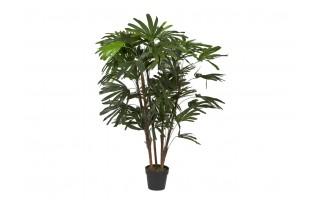 Roślina sztuczna Rhapis Excelsa 150cm