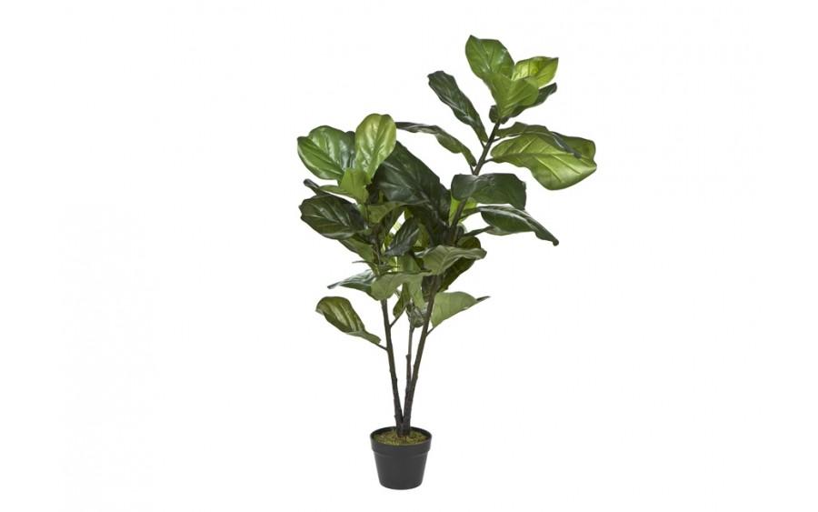 Roślina doniczkowa Fiddle Leaf 120cm (sztuczna)