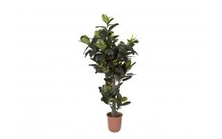 Roślina Figowiec sprężysty 190cm (sztuczna)
