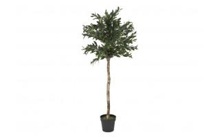 Roślina doniczkowa Oliwka 150cm (sztuczna)