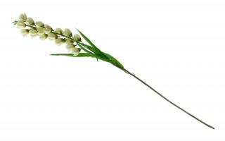 Juka kwiat sztuczny