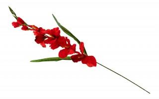 Mieczyk kwiat sztuczny 86cm