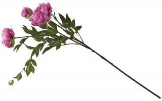 Piwonia kwiat sztuczny mix 110 cm